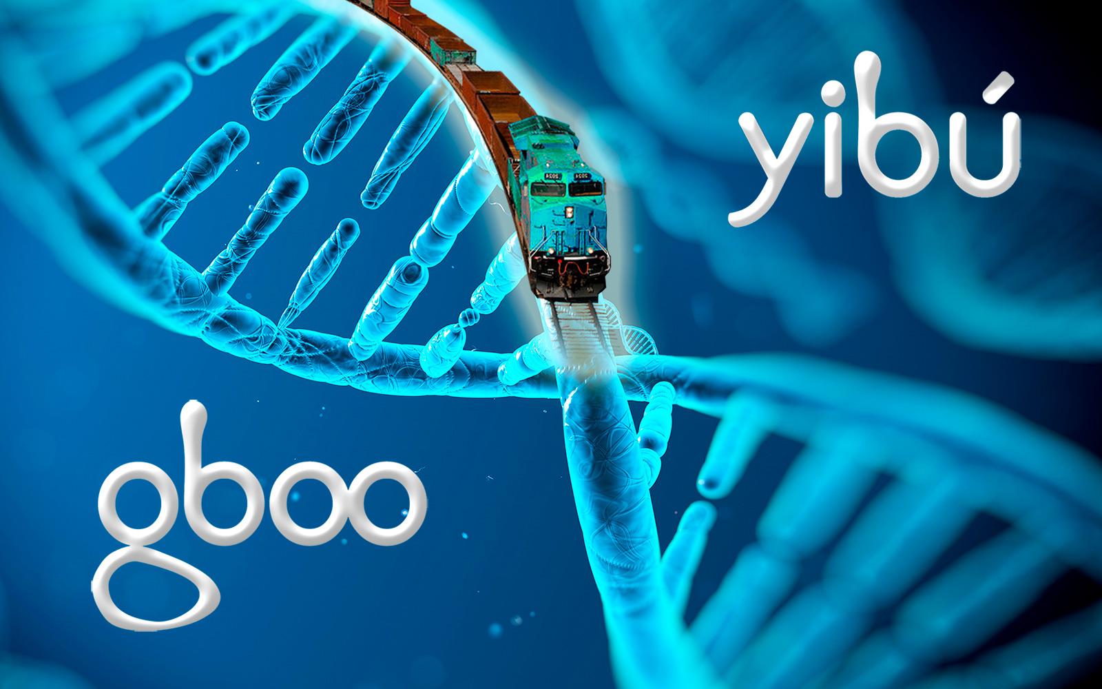 Yibu es Gboo Agencia creativa digital