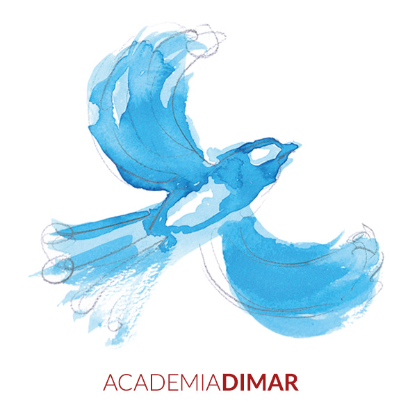 Ilustración de Duncan Frith web para escuela de idiomas